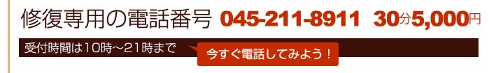 男性専用の電話番号 045‐642-7425 受付時間は10時~22時まで  30分5,000円  今すぐ電話してみよう!